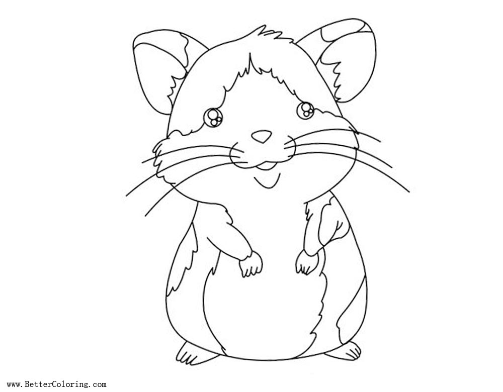 Free Baby Hamster Coloring Pages printable