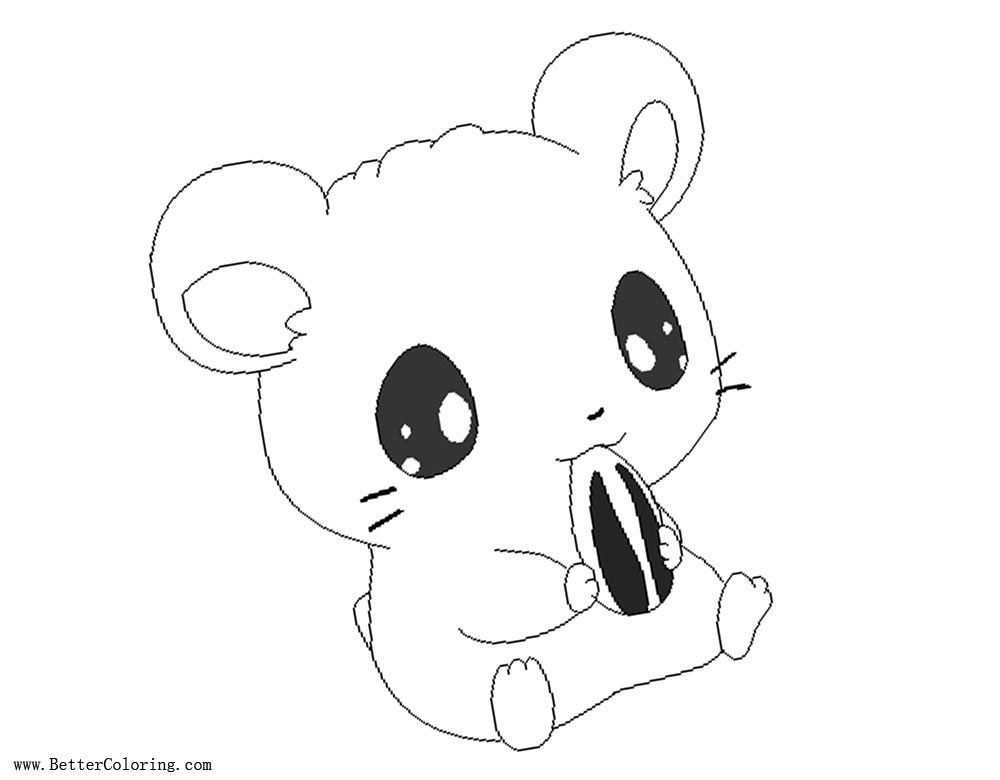 Cartoon Hamster Coloring Pages with Sunflower Seed Free
