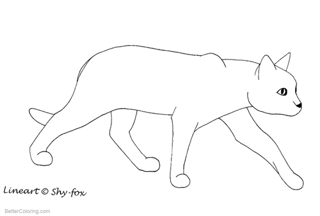 Free Cat Coloring Pages Outline by shy fox printable
