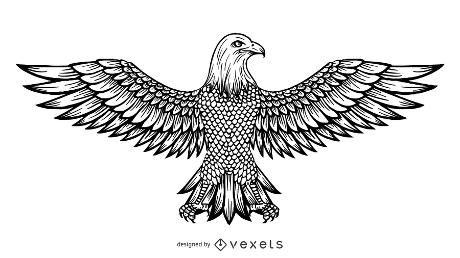 Free Eagle Coloring Pages designed by vexels printable