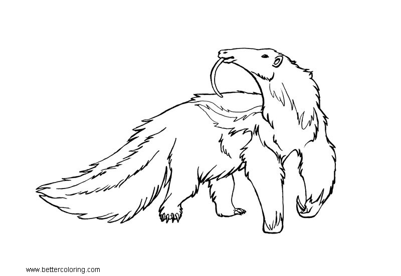 Free Giant Anteater Coloring Pages by xiphosuras printable