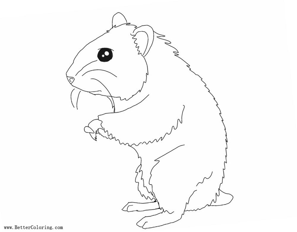 Free Hamster Coloring Pages Line Drawing by lolkitteh98 printable