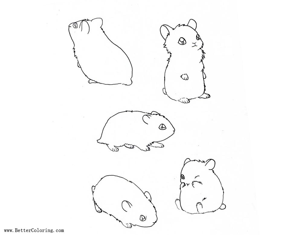 Hamster Coloring Pages by aconite pawlove Free Printable