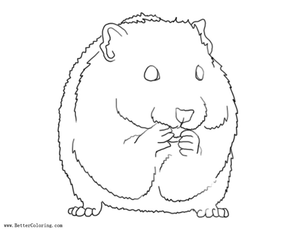 Free Hamster Coloring Pages by ashleyphotographics printable
