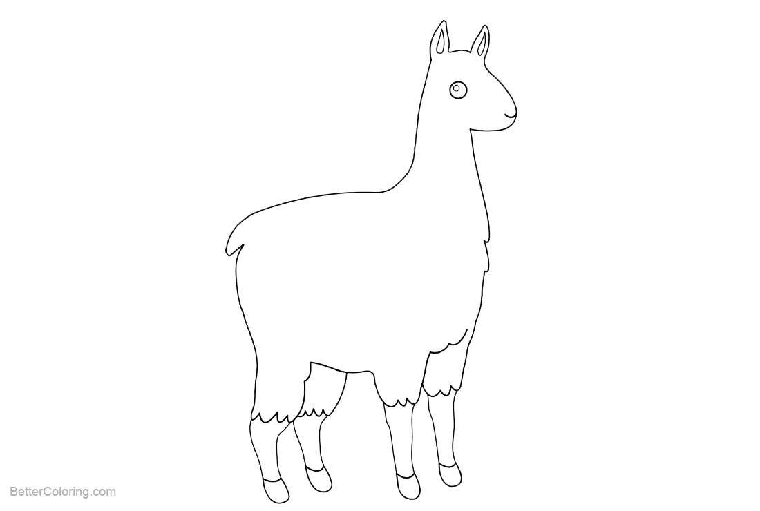 alpaca coloring pages for kids - photo#17
