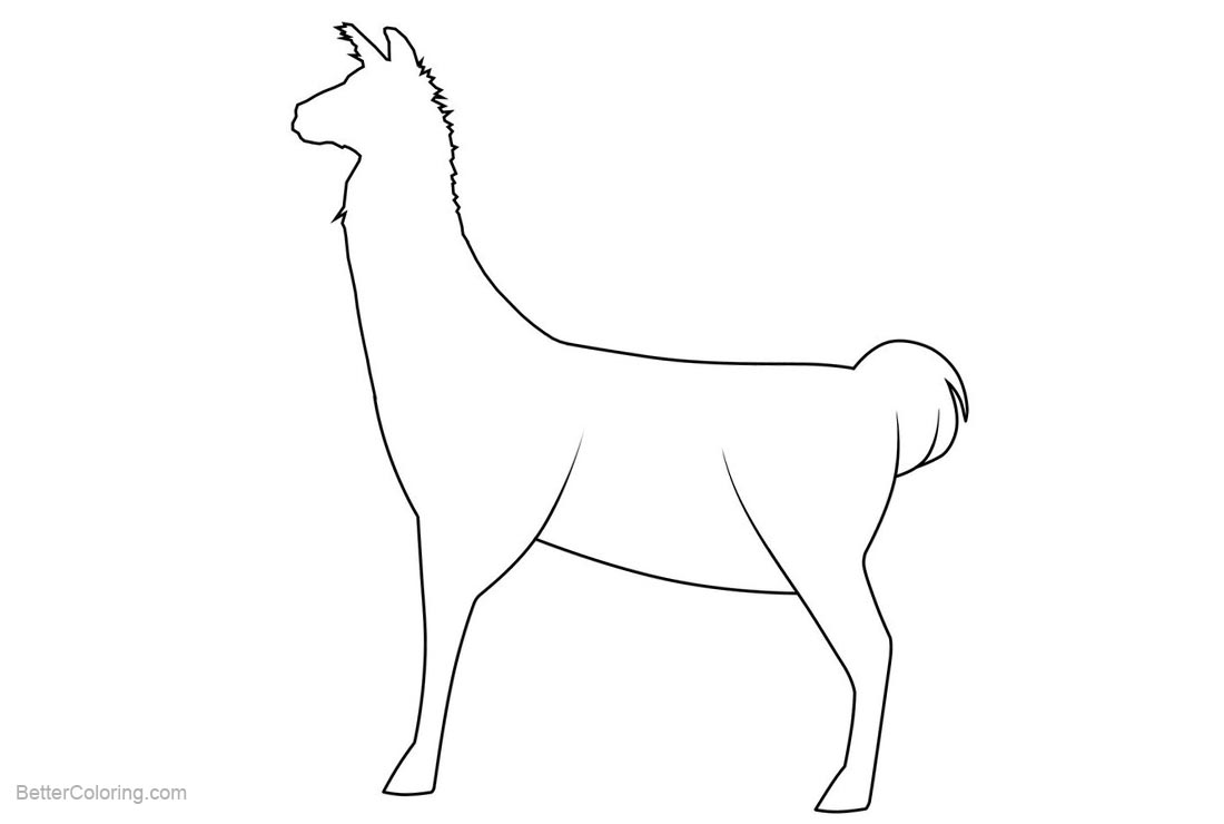 Free Llama Coloring Pages Outline by Queadha printable