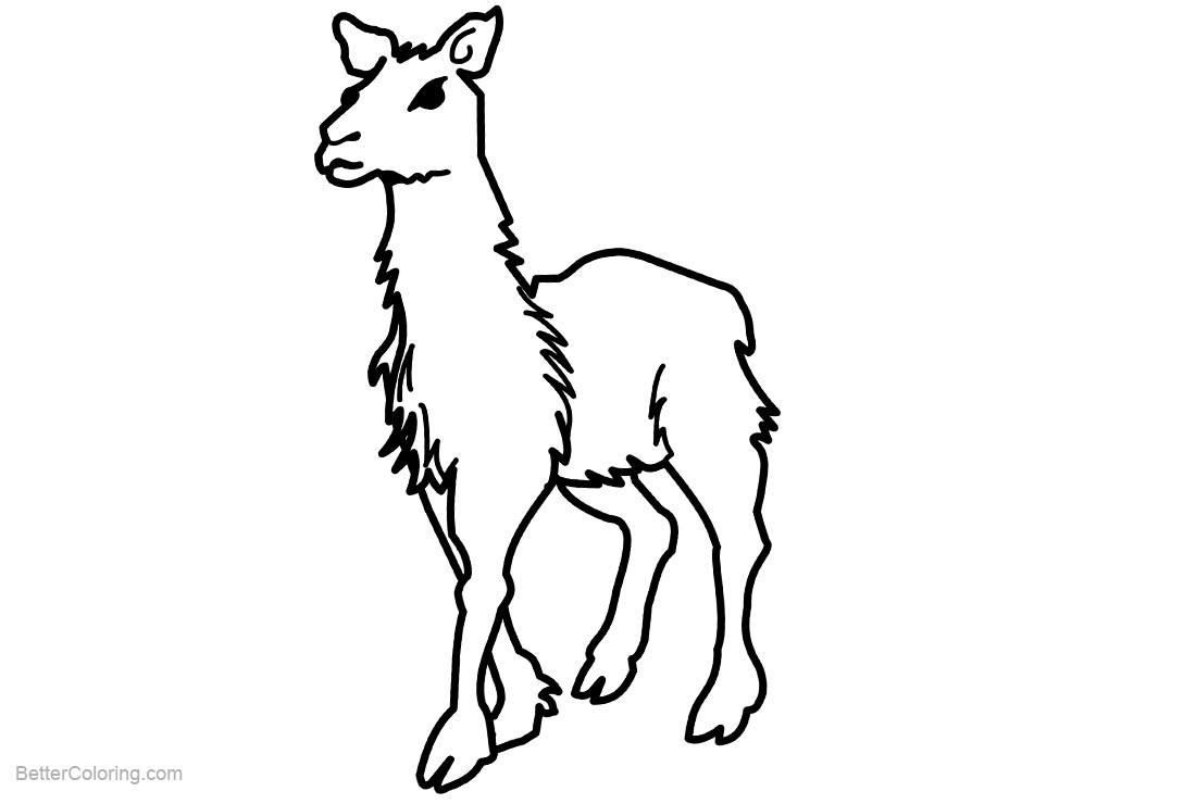 Free Llama Coloring Pages Walking printable