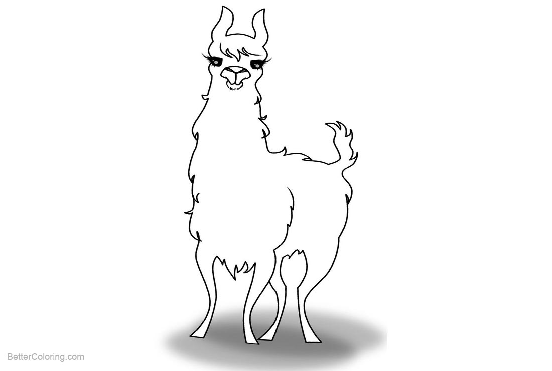 Free Llama Coloring Pages by Nuctameron printable