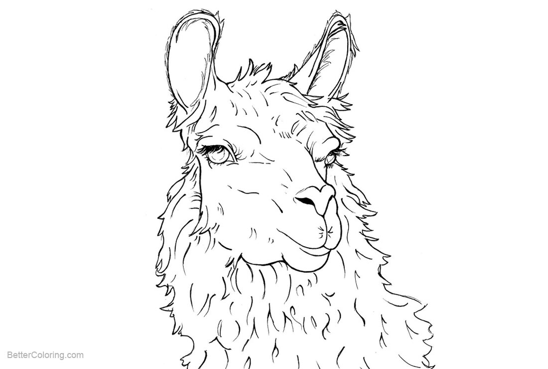 Free Llama Coloring Pages by ltrchadz on DeviantArt printable