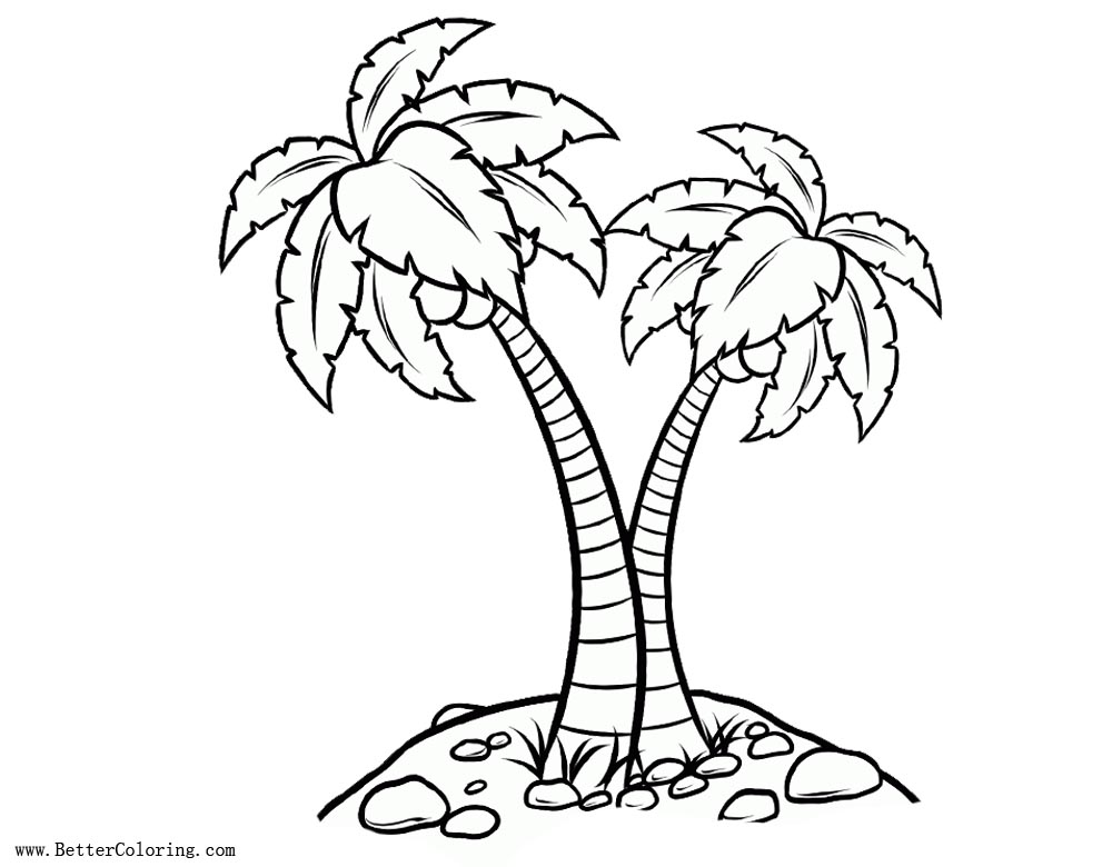 Free Palm Tree Coloring Pages Realistic Drawing printable