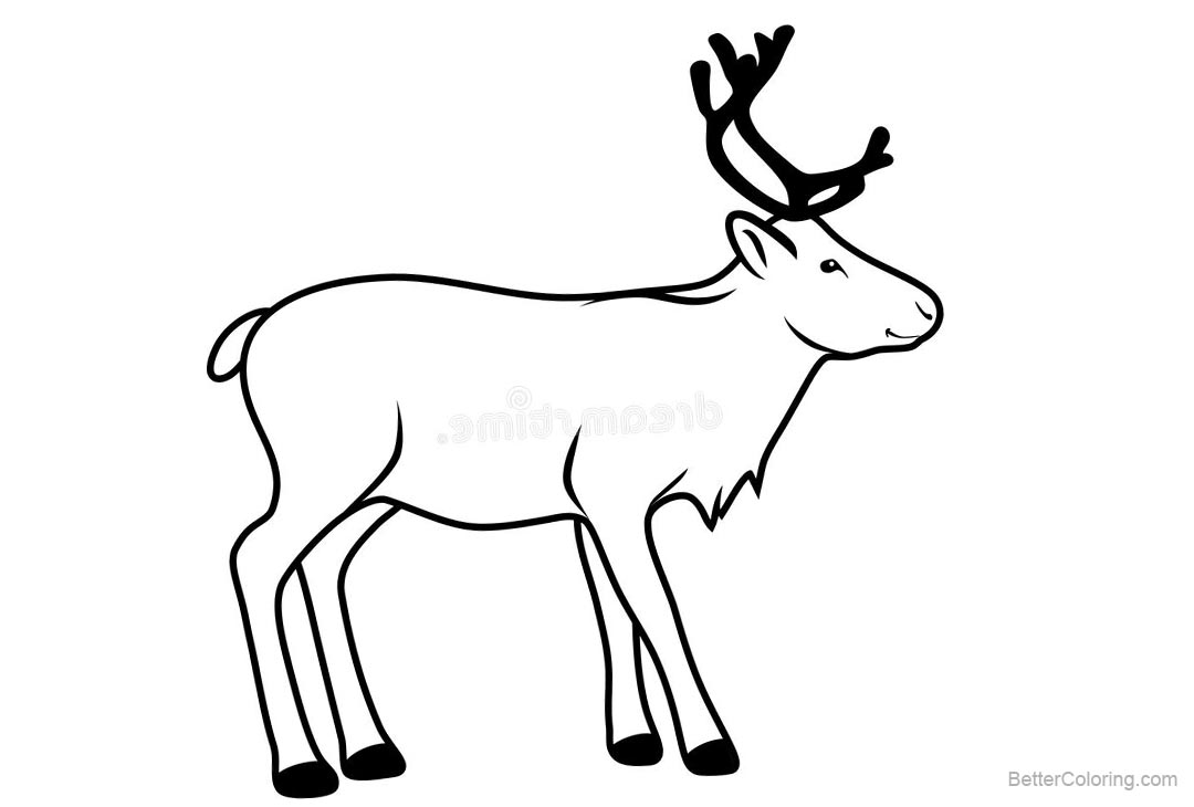 Free Reindeer Coloring Pages Contour Drawing printable