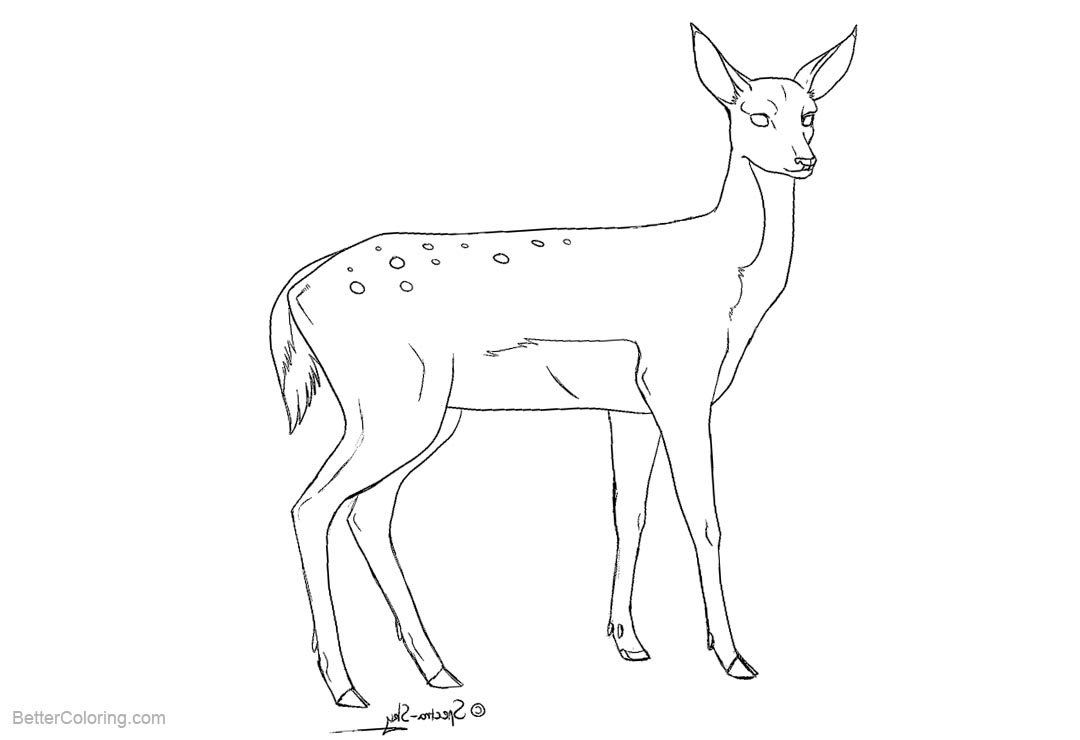 Free Reindeer Coloring Pages by spectra sky printable