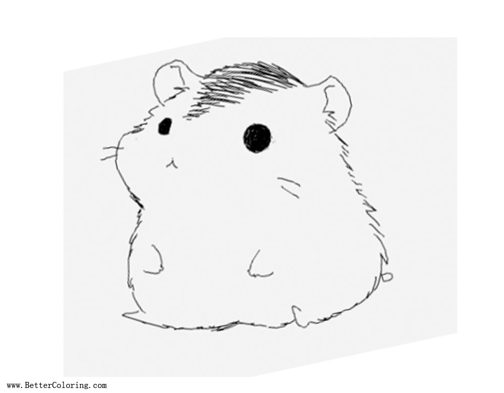 Simple Hamster Coloring Pages - Free Printable Coloring Pages