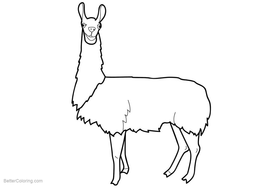 Free Simple Llama Coloring Pages Clip Art printable