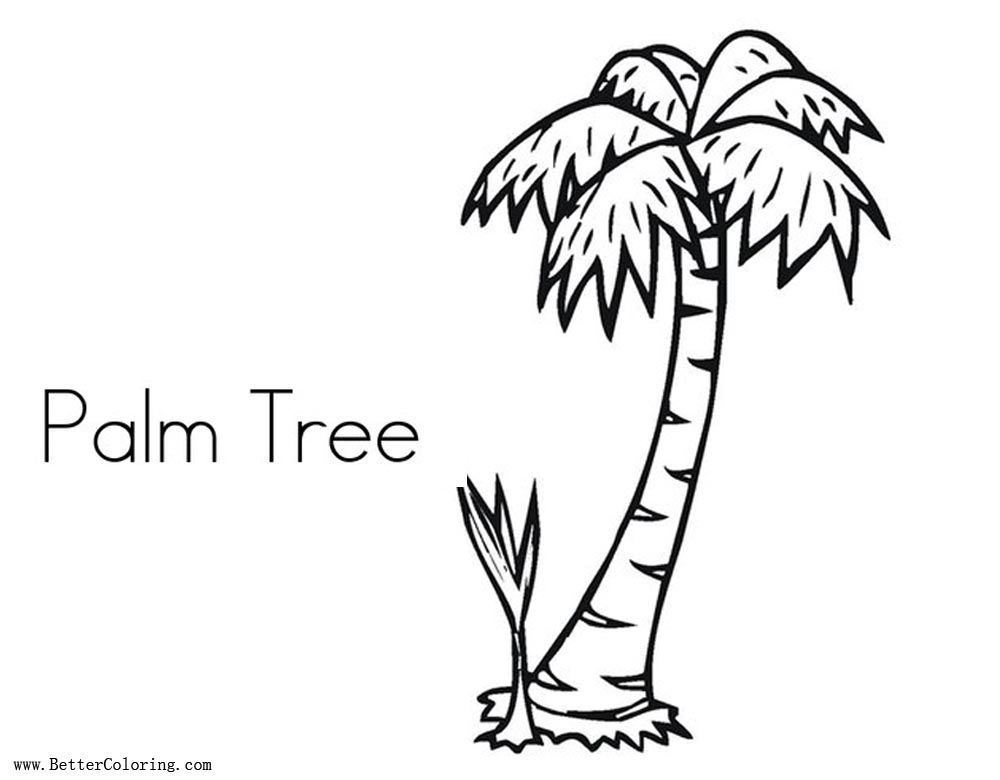 Free Simple Palm Tree Coloring Page printable