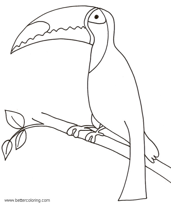 Free Toucan Coloring Pages On The Tree printable