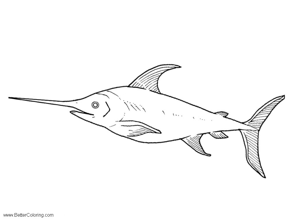 Free Under The Sea Coloring Pages Sword Fish printable