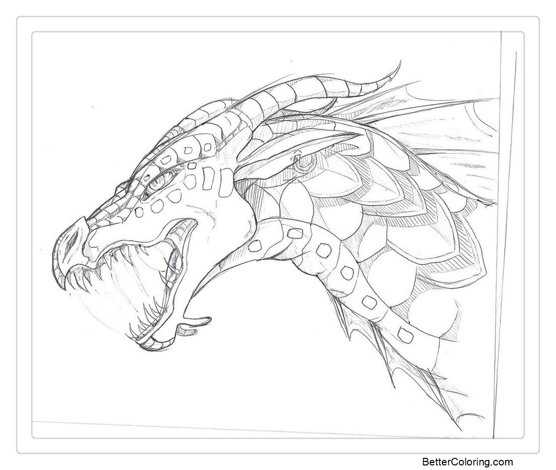 Wings of Fire Coloring Pages Seawing Sketch by