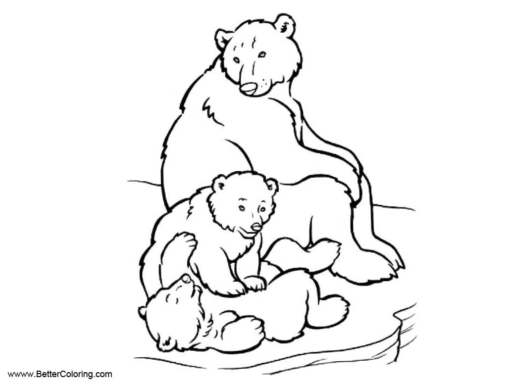 Free Bear from Arctic Tundra Animals Coloring Pages printable