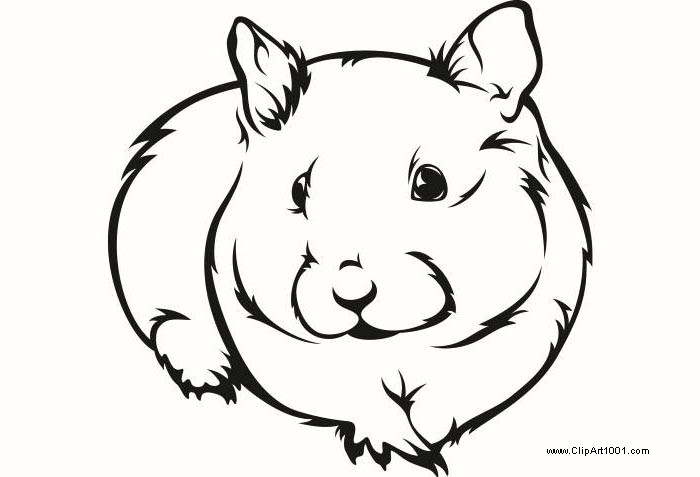 Free Guinea Pig Coloring Pages Ink printable