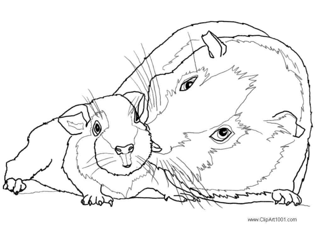 guinea pig free coloring pages | Guinea Pig Coloring Pages Mom and Baby - Free Printable ...
