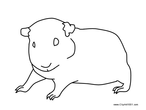 Guinea Pig Coloring Pages by Orouch