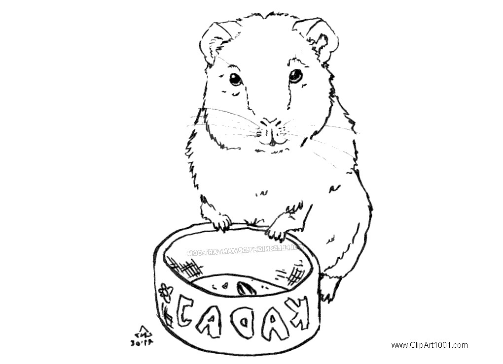 Free Guinea Pig Coloring Pages by wolflessnight printable