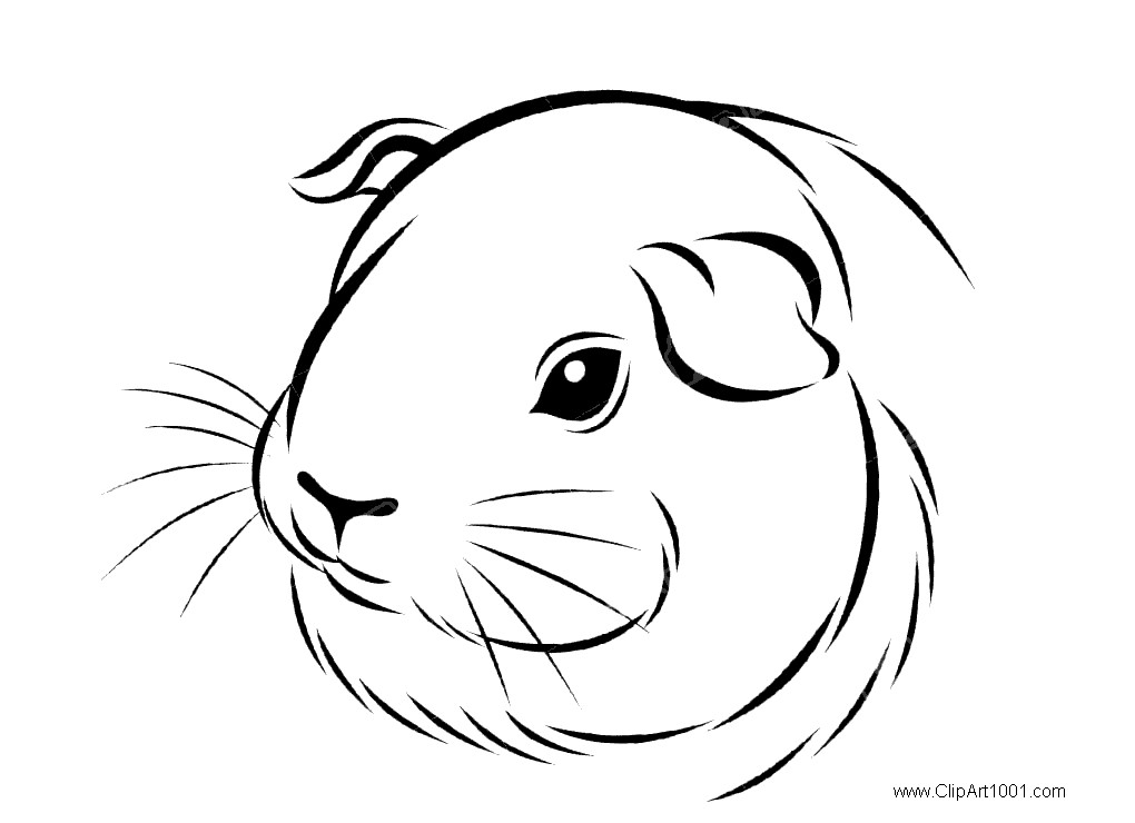 Head of Guinea Pig Coloring Pages