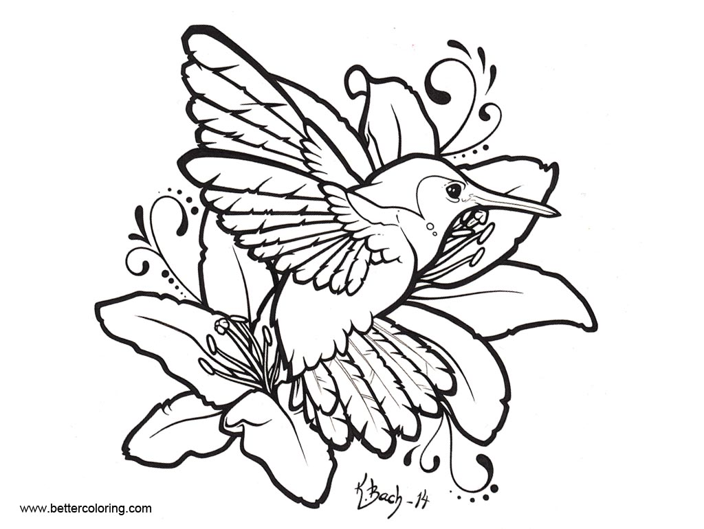 Free Hummingbird Coloirng Pages Drawing by BlueUndine printable