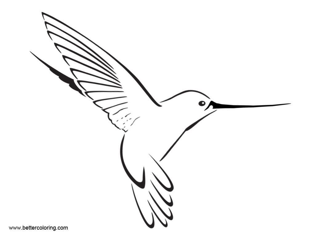 Free Hummingbird Coloirng Pages Easy Drawing printable