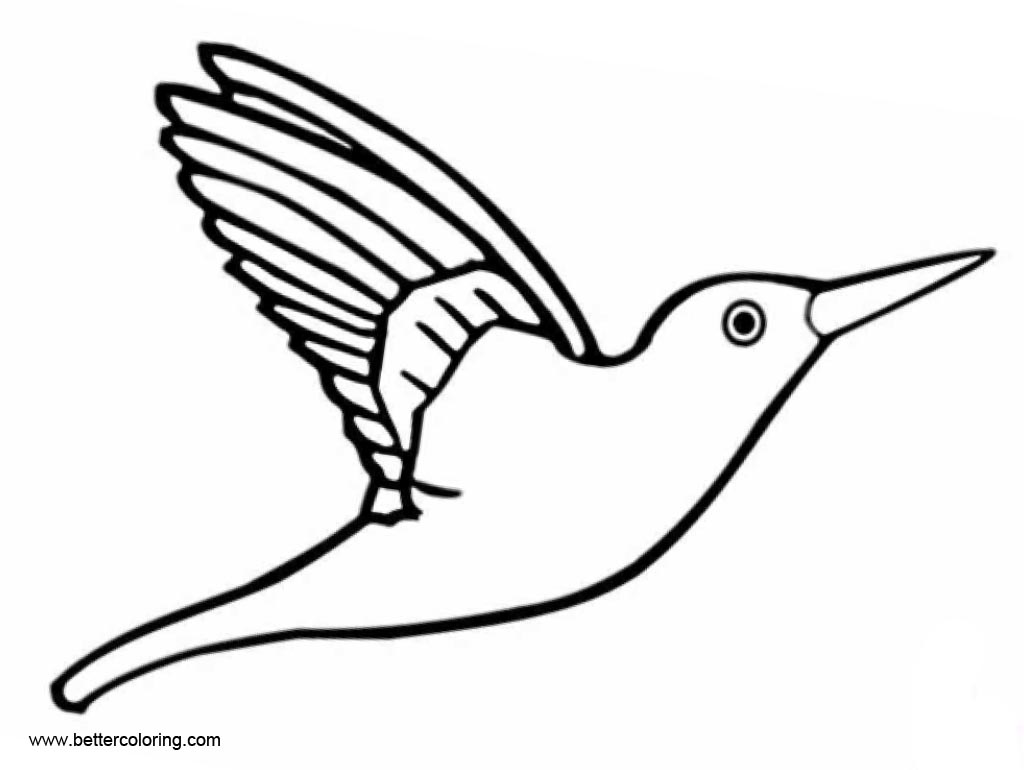 Free Hummingbird Coloirng Pages Outline printable