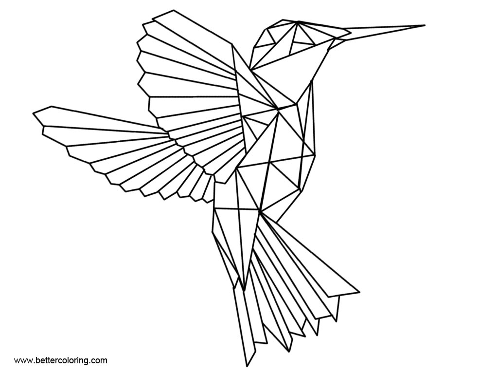 Free Hummingbird Coloirng Pages for Adults printable