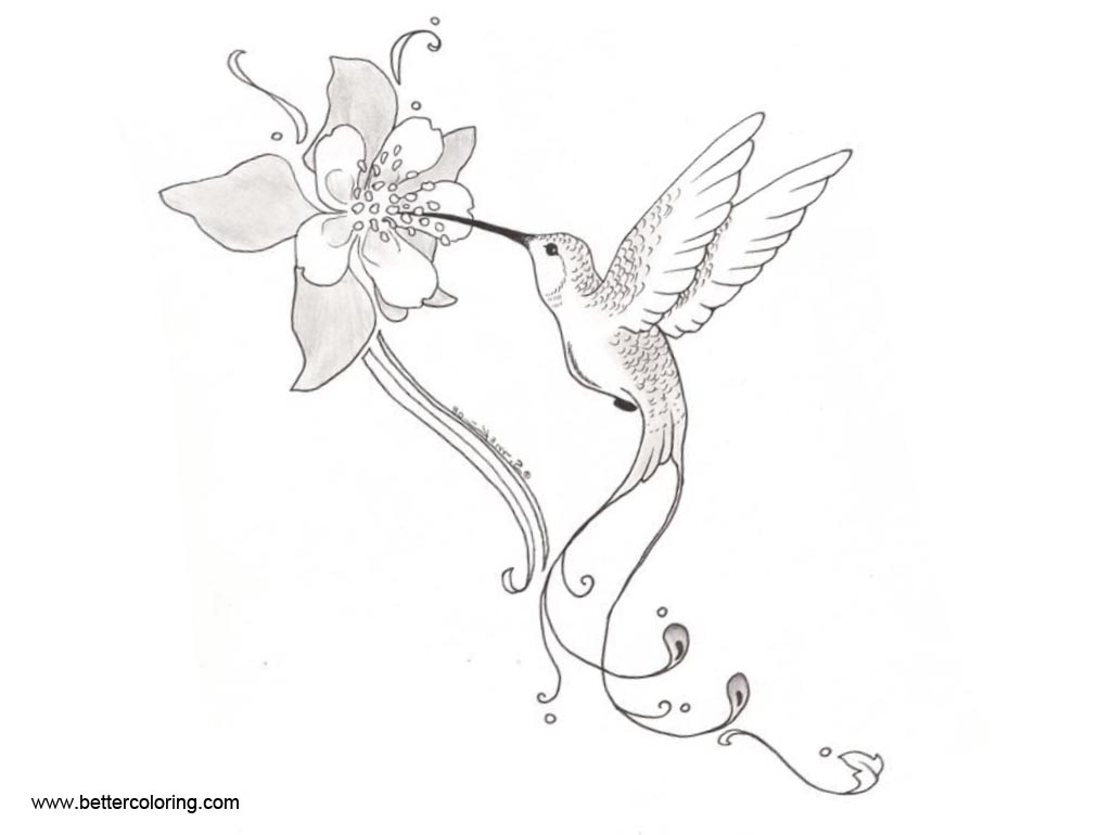 Free Hummingbird Coloirng Pages with Flowers printable