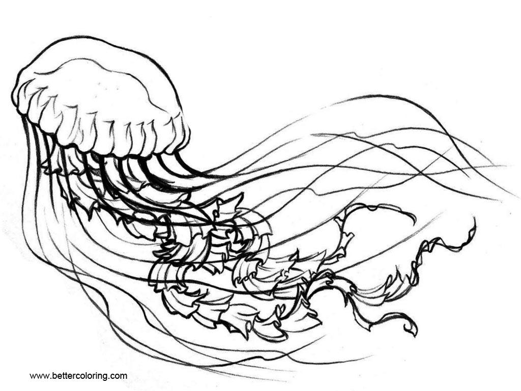 Free Jellyfish Coloring Book printable