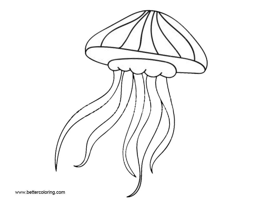 Free Jellyfish Coloring Pages Easy Drawing printable