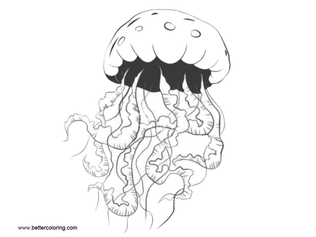 Free Jellyfish Coloring Pages Inkblot printable