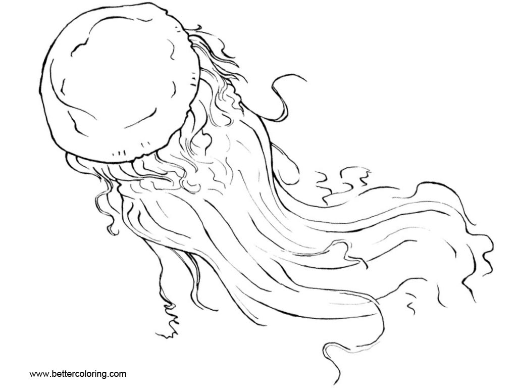 Jellyfish Coloring Pages by Xiphosuras