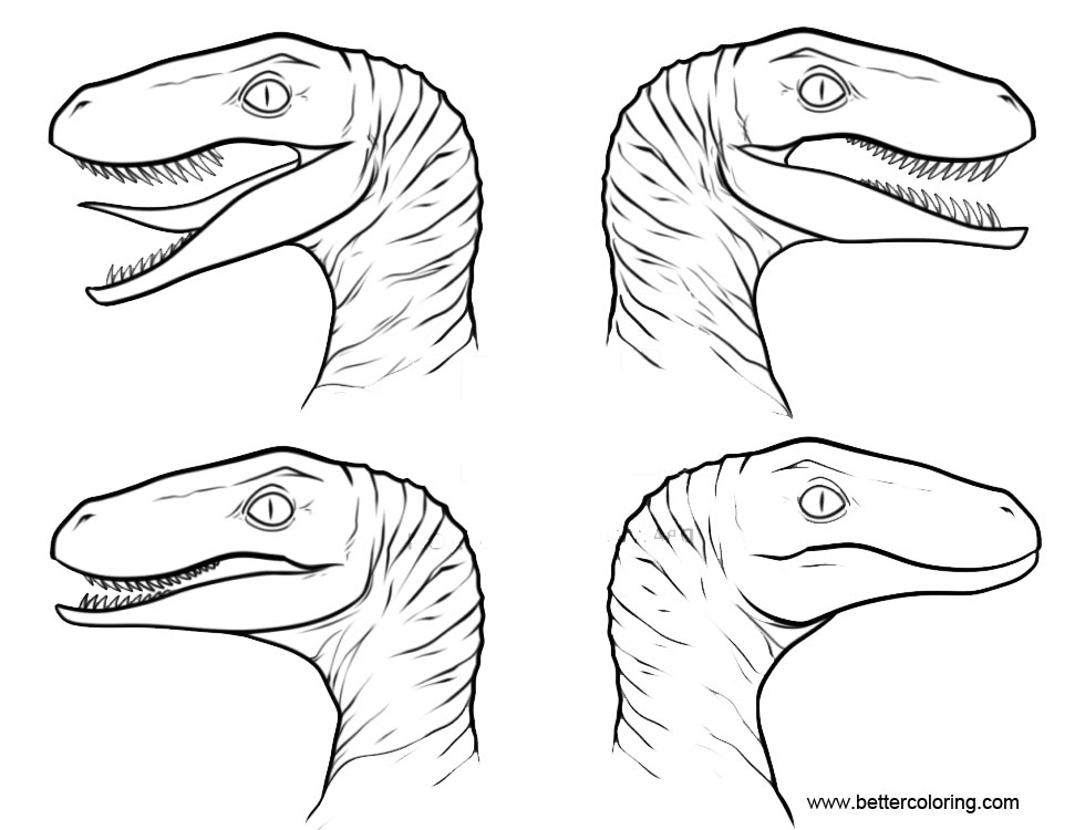 Coloring Pages Velociraptor Blue Jurassic Coloring Pages