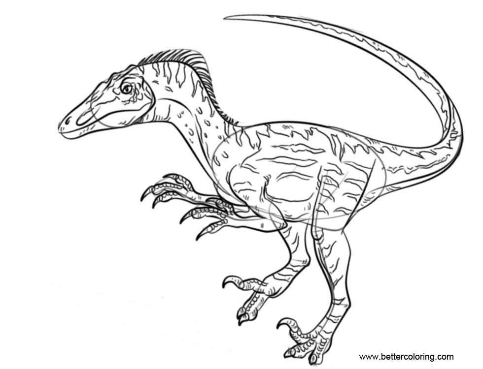 Free Jurassic World Coloring Pages Velociraptor printable