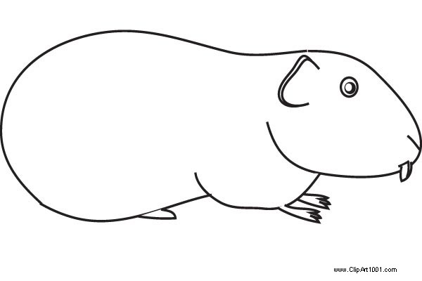 Free Simple Guinea Pig Coloring Pages printable