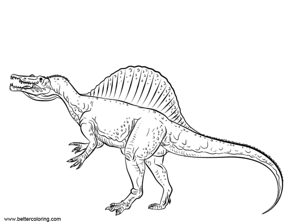 Free Spinosaurus Coloring Pages Line Art printable