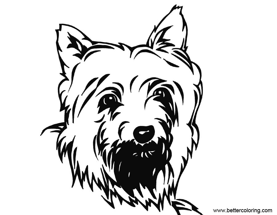 yorkshire coloring pages | Yorkie Coloring Pages Inks Drawing - Free Printable ...