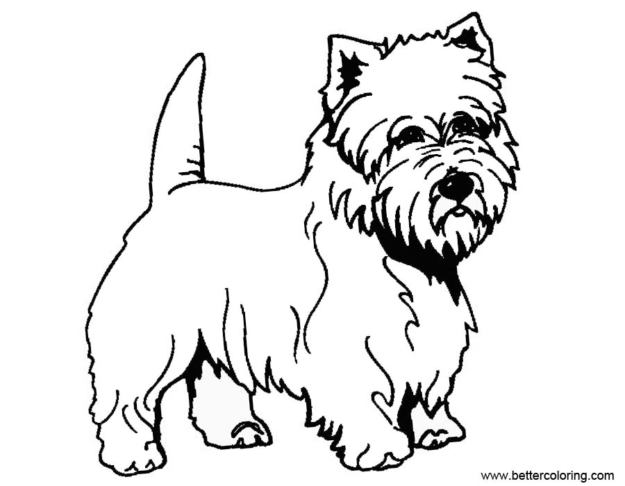 Free Yorkie Coloring Pages Outline printable