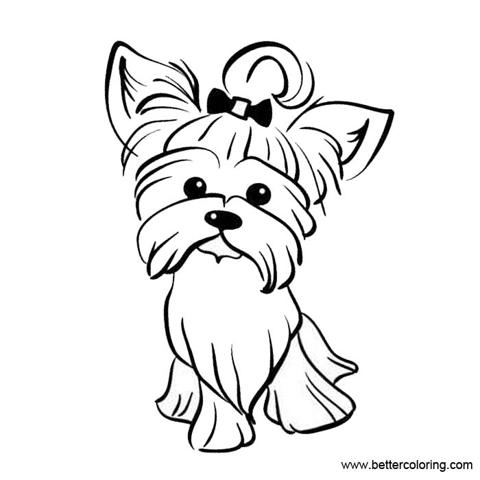 Free Yorkie Coloring Pages printable