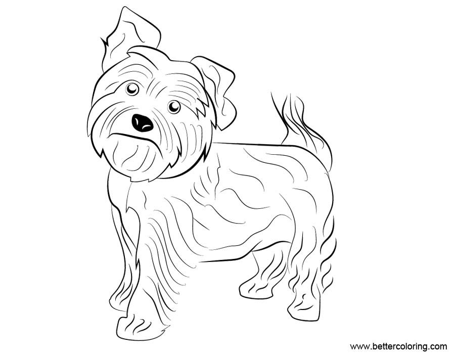 yourkie doags coloring pages | Yorkie Dog Coloring Pages - Free Printable Coloring Pages