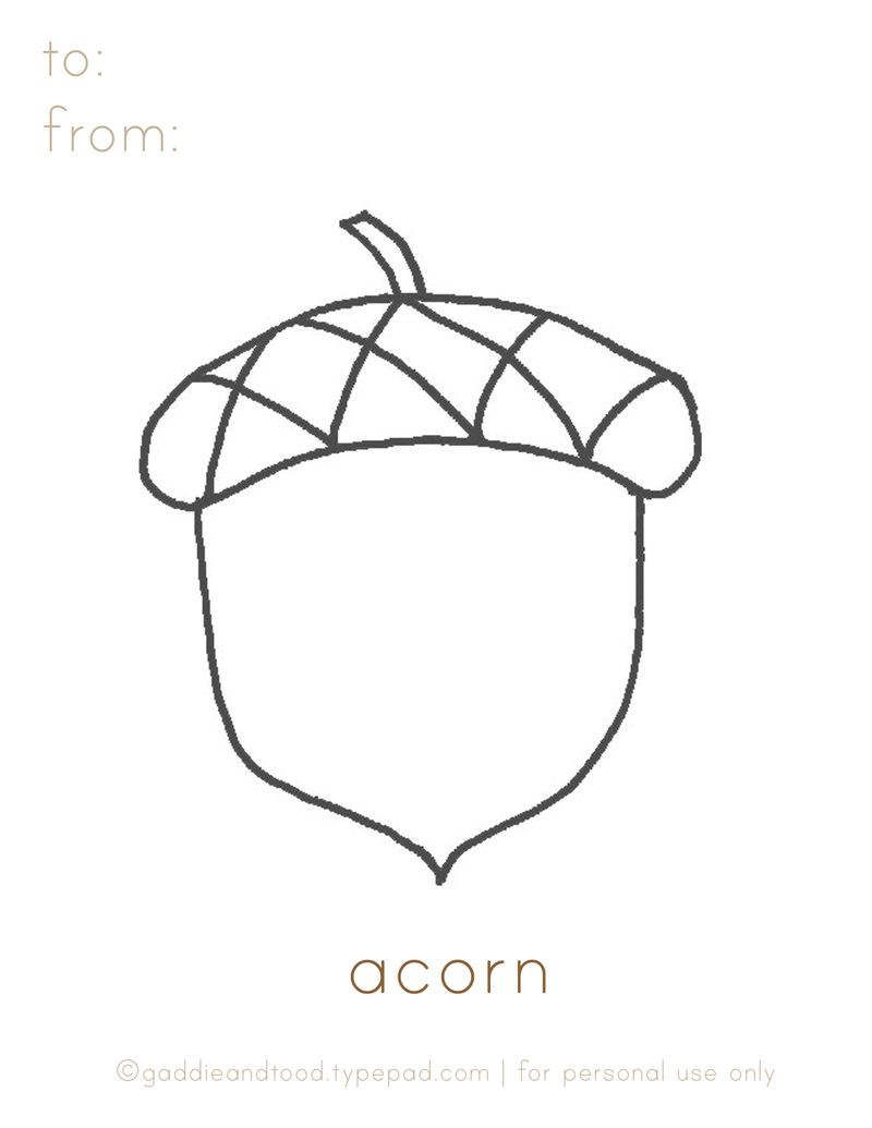 Free Acorn Coloring Pages Free Printable printable