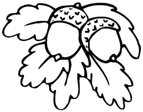 Acorn Coloring Pages and Leaves - Free Printable Coloring Pages