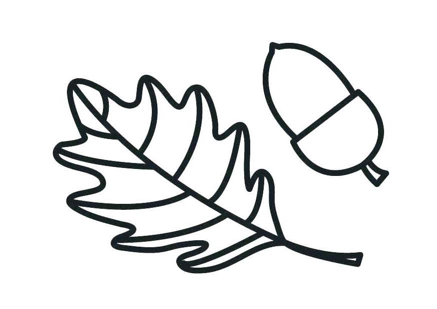 Acorn Coloring Pages and Squash - Free Printable Coloring Pages