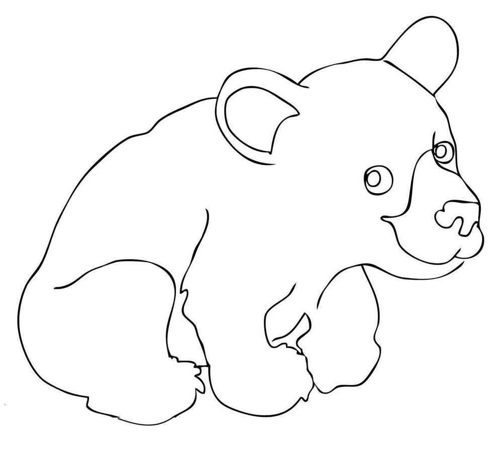 Printable Brown Bear Coloring Pages Outline Drawing