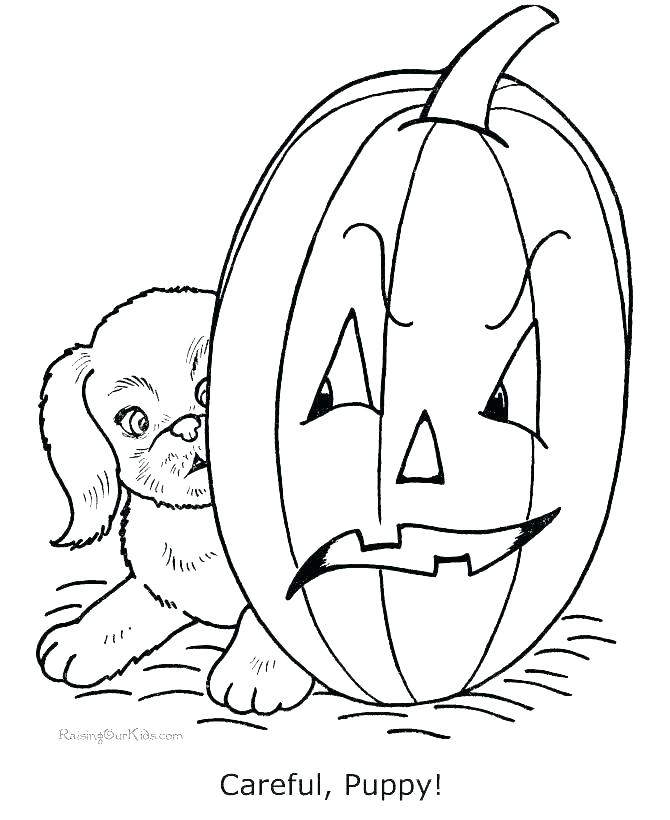 Free Jack o Lantern Coloring Pages for Adults printable